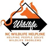 Wildlife-Helpline-Logo