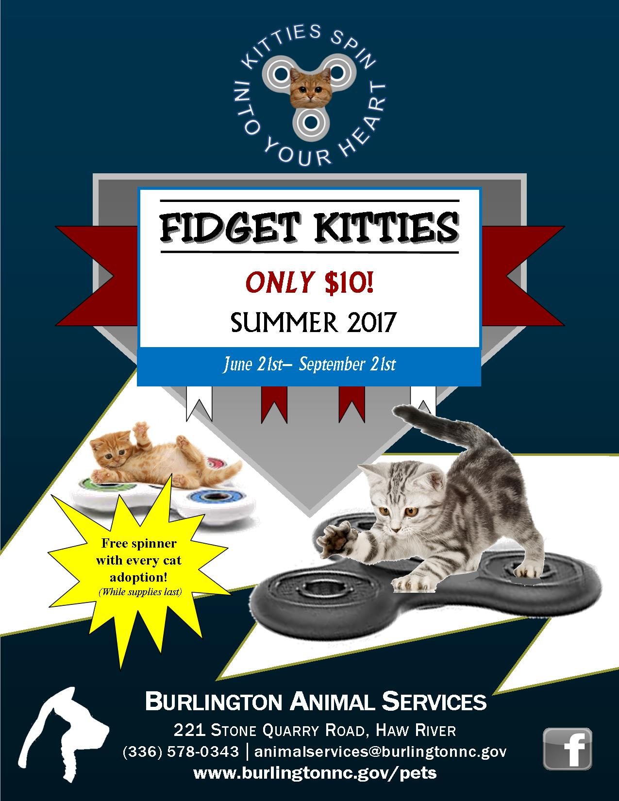 Fidget Kitties June 2017