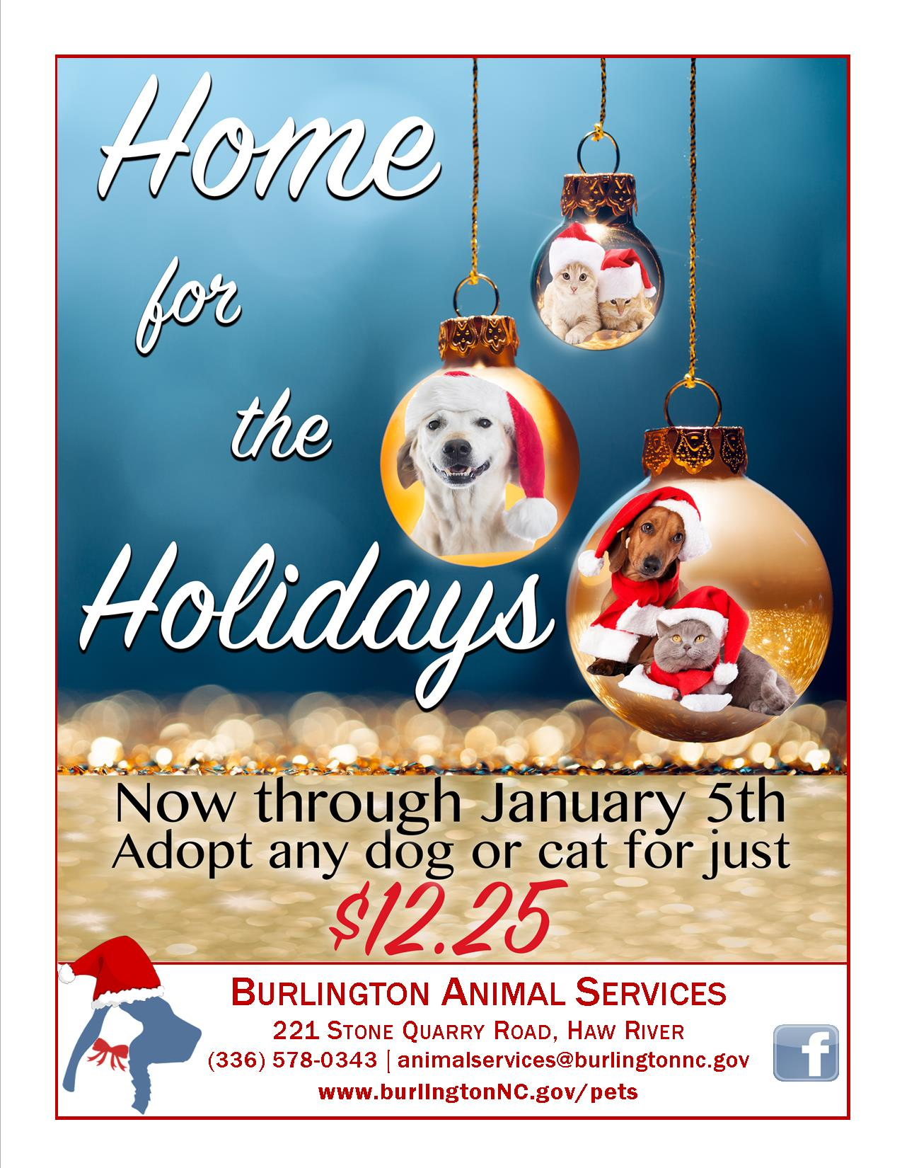 Revised Home for the Holidays 2017 flier