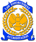 Calea_Logo_Transparent_Web_Edit