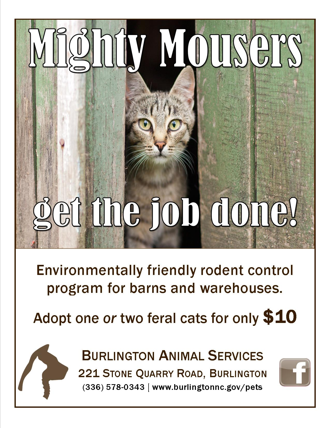 Mighty Mouser Flier 2018 ver. 2