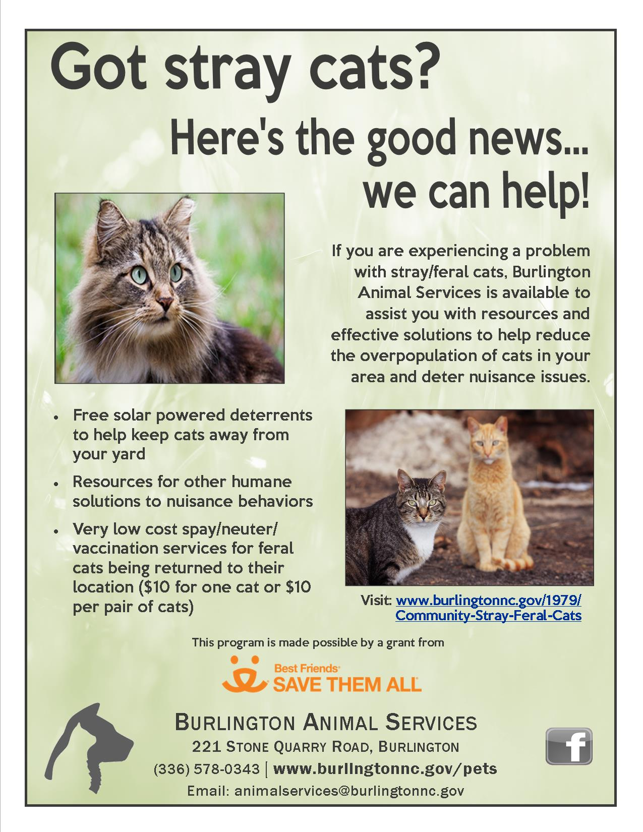 Community Cat Flier