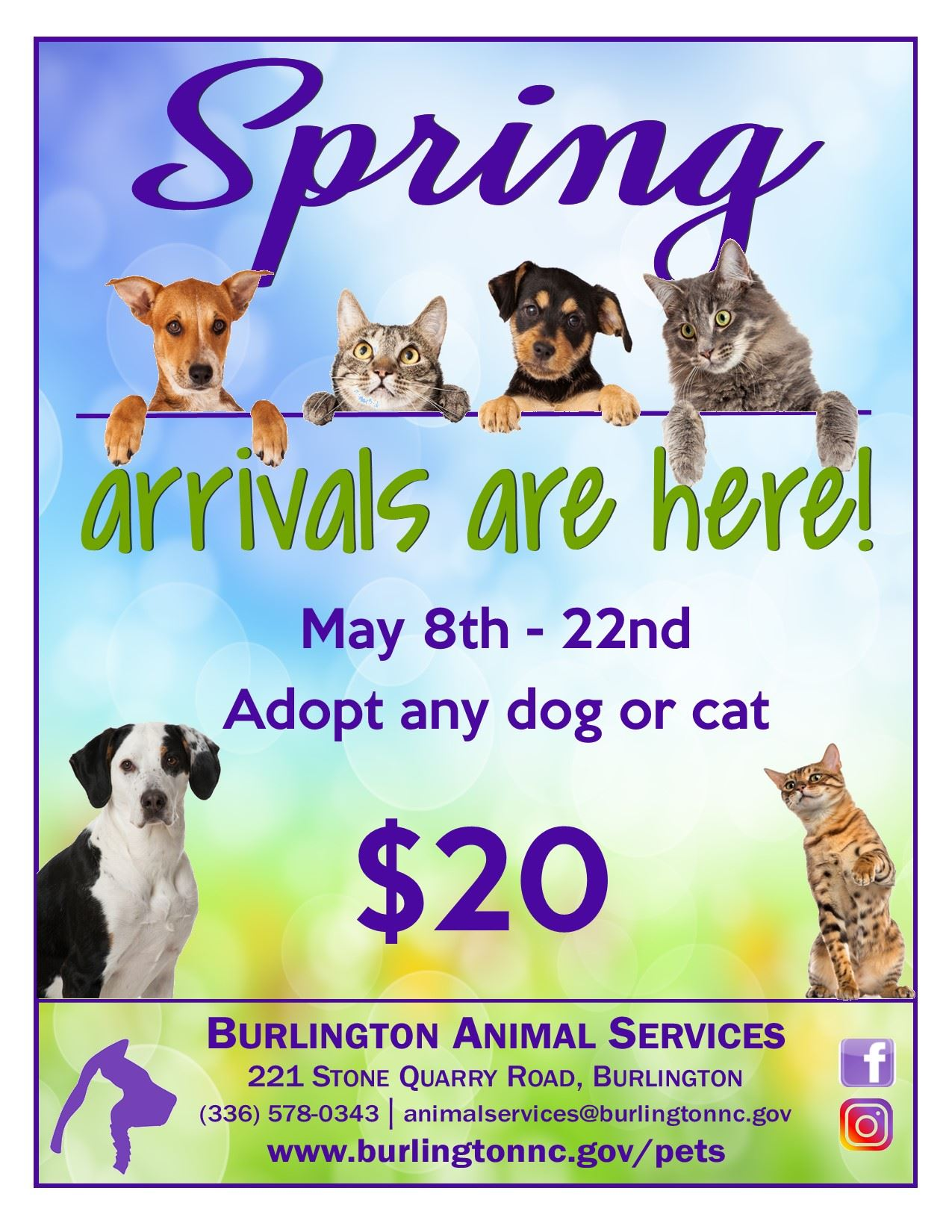 May 2021 Adoption Special