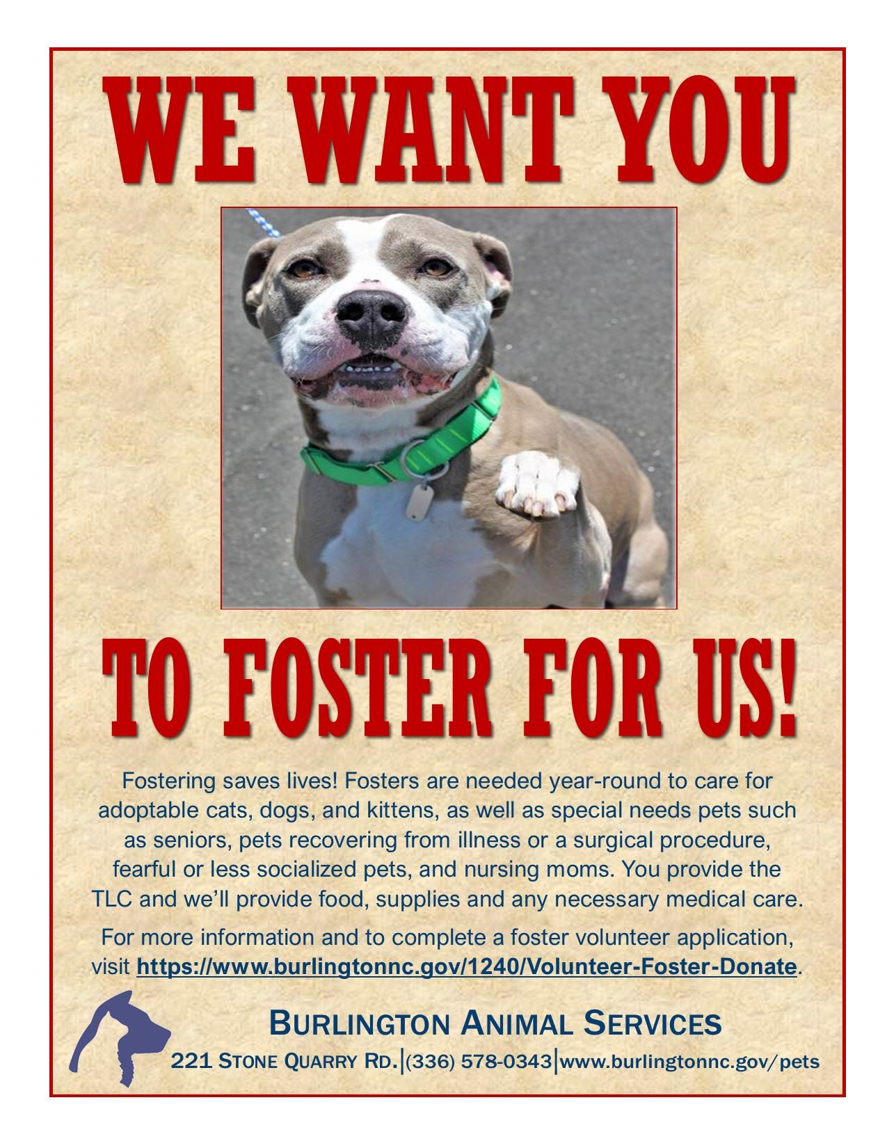We Want You to Foster flyer May 2021