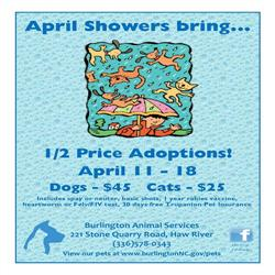 April Adoption Special